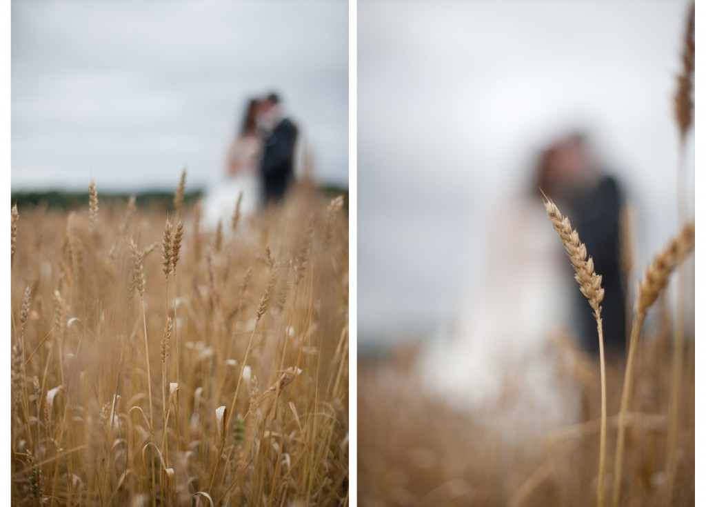 Bride and groom portraits in field. Creative, professional wedding photography