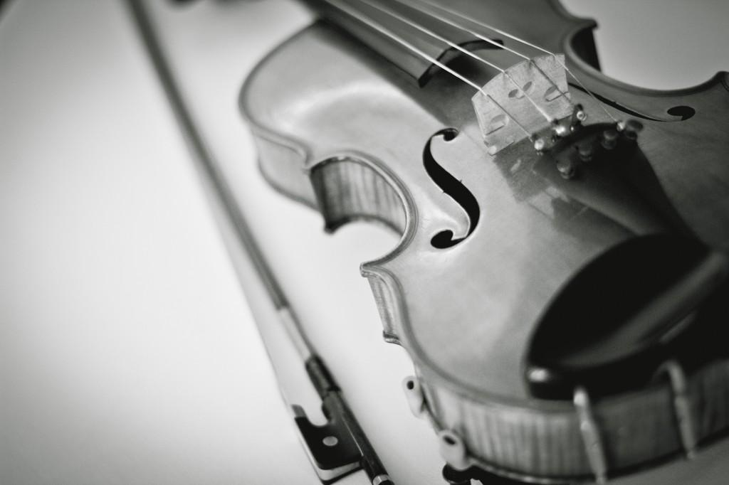 A close up shot of a violin from the string quartet, Cumbria Photographer