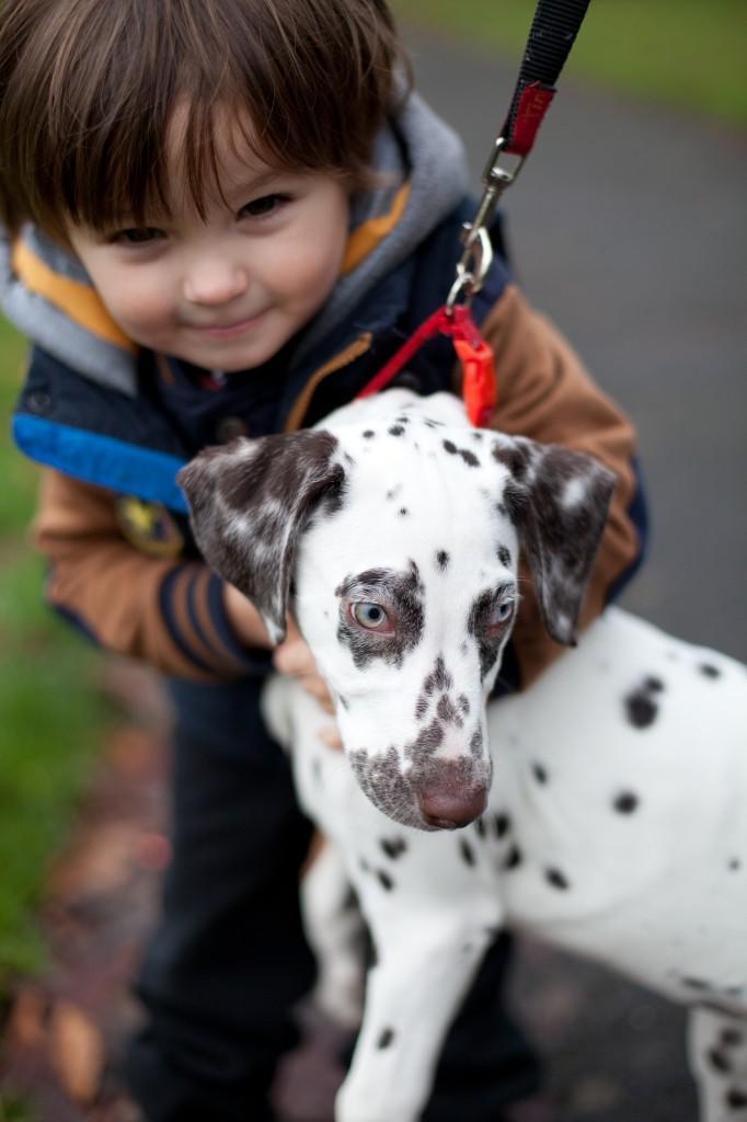 A cute little boy and his dog. Preston Portrait Photography