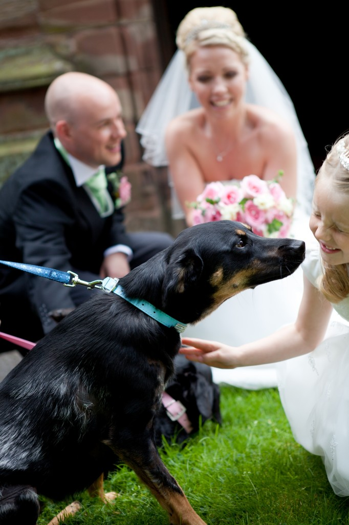 The bride and groom greet their dogs, Lancashire wedding photography