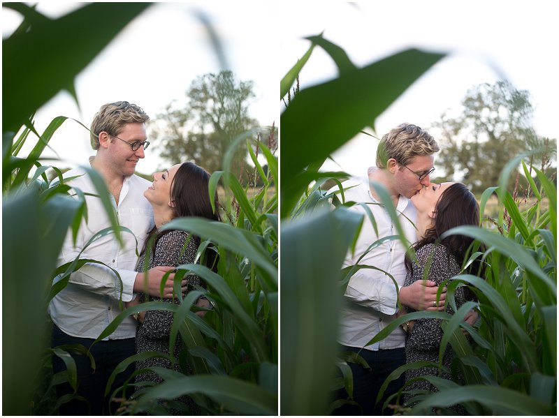 Kissing in the corn fields | Ormskirk Photography