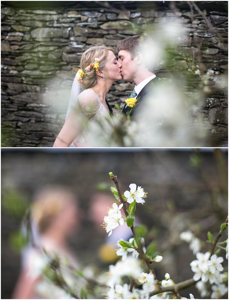 Bride and Groom kiss behind blossom tree Belmount Hall