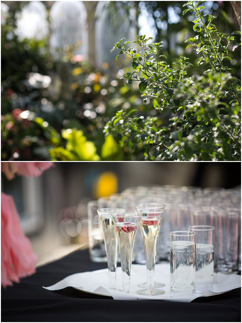 Beautiful Wedding at Sefton Park Palm House