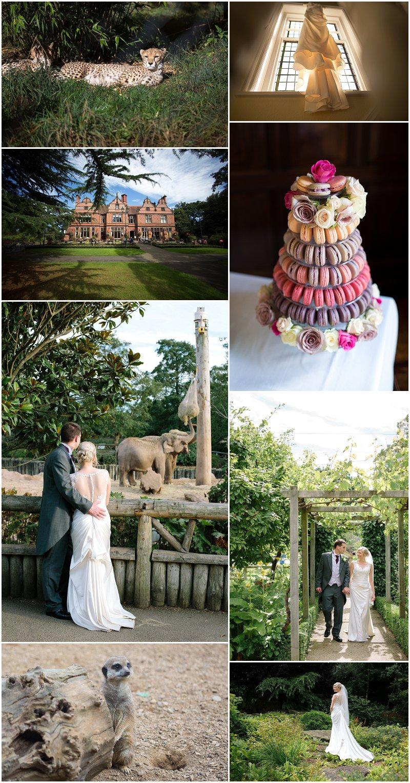 Chester Zoo Wedding Photographs