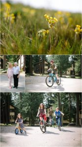 Whinfell Forest Family Session Center Parcs